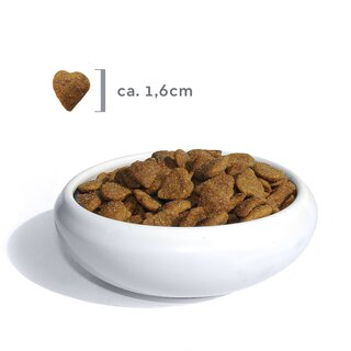 FBM Lamm & Reis Sensitive Cat 1kg